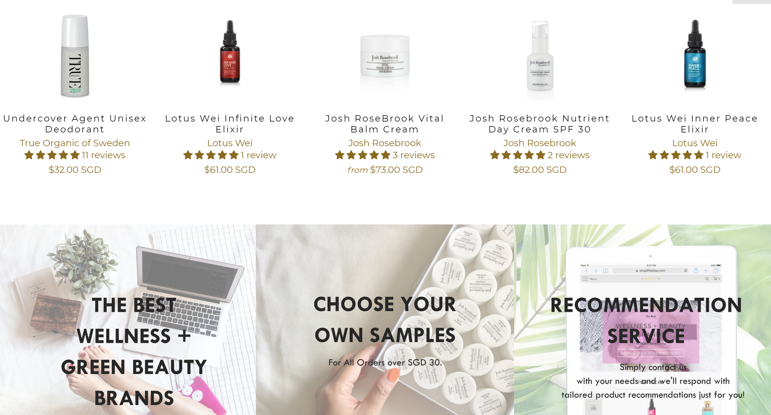 ECommerce store for quality natural beauty and wellness brands Business for Sale