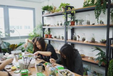 Gardening Art Studio For Takeover