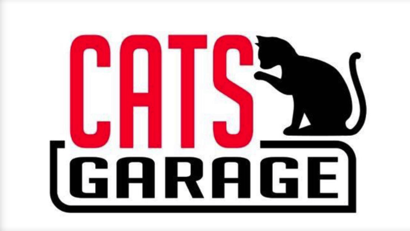 Cats Garage (Online Pet Supplies And Cat Grooming Services) | For Sale | Look For Buyer - Business for Sale, Buy a Ready Business