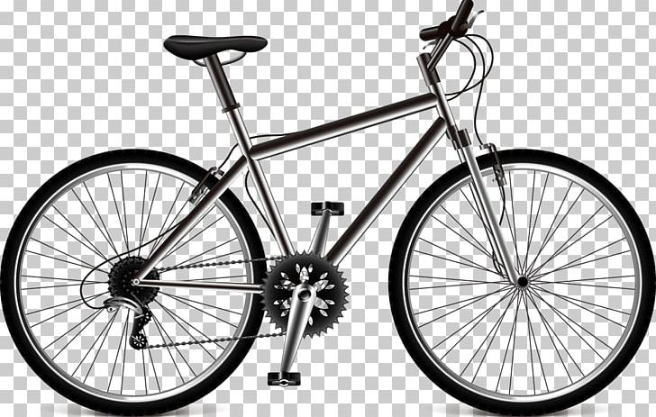 Great successful bike shop for sales | For Sale | Look For Buyer - Business for Sale, Buy a Ready Business